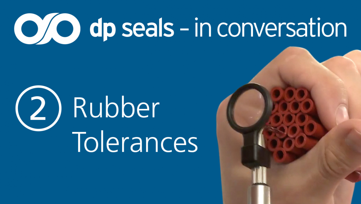 Dp Seals: In conversation video series