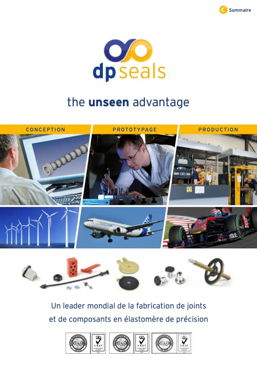 DP Seals General Brochure - French Edition